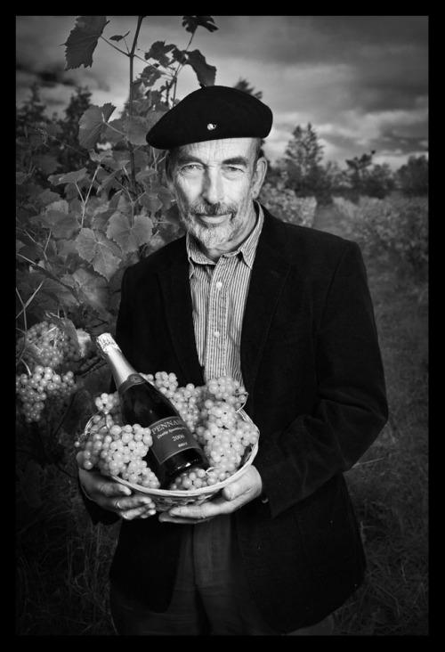 Dr Hugh Tripp, East Pennard sparkling wine