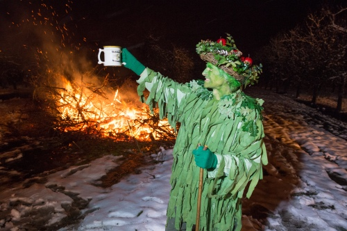 The green man who blesses the trees with fresh cider